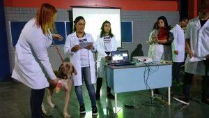 Medicina Veterinária: cavalo, cães, gato e até mini boi no hall da Universo-Campos 4